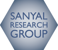 Sanyal Research Group