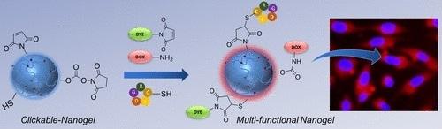 Theranostic Nanogels